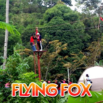 Flying Fox - Flying Fox