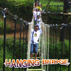 Hanging Bridge 300x300 - Hanging Bridge