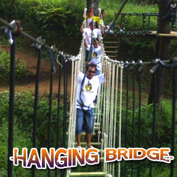 Hanging Bridge - Hanging Bridge