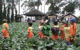 little f 263x165 - 8 Tempat Outbond Bagi Anak – Anak Yang Cocok Pada Waktu Liburan