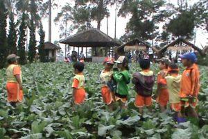 little f 300x200 - 8 Tempat Outbond Bagi Anak – Anak Yang Cocok Pada Waktu Liburan