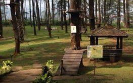 tretop 263x165 - 6 Tempat Outbond Perusahaan Yang Recommended di Bandung