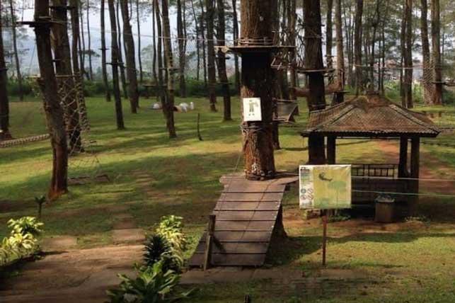 tretop - 6 Tempat Outbond Perusahaan Yang Recommended di Bandung